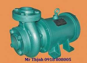 may-bom-chim-truc-ngang-lubi-lhl-160-1-5kw-2-0hp-1ph-230vac