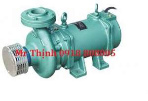 may-bom-chim-truc-ngang-lubi-lhs-150b-0-5hp-1ph-230v